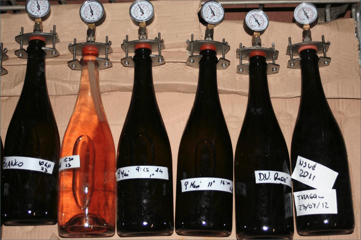 Controllo della fermentazione