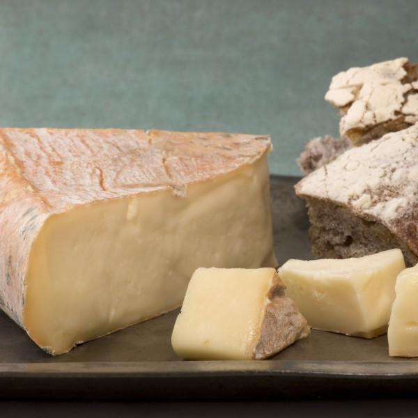 formaggio-taleggio