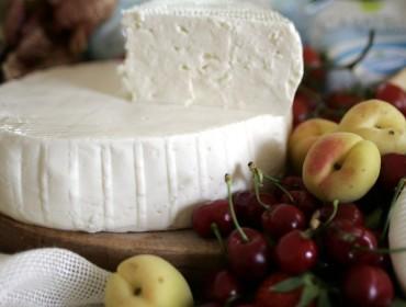Casatella-Trevigiana-cheese_qualigeo